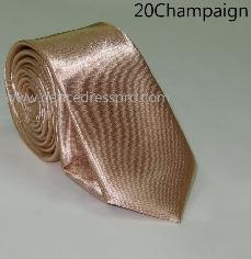 20 Necktie - Champagne